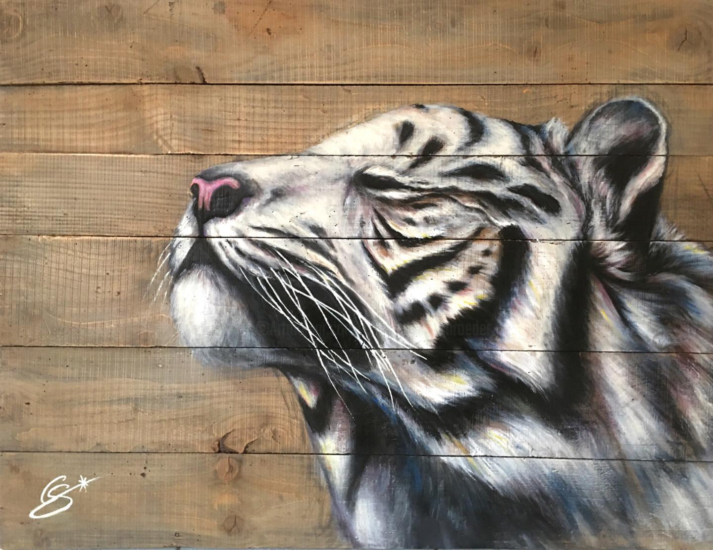 Constance Schroeder - Tigre Carpe Diem