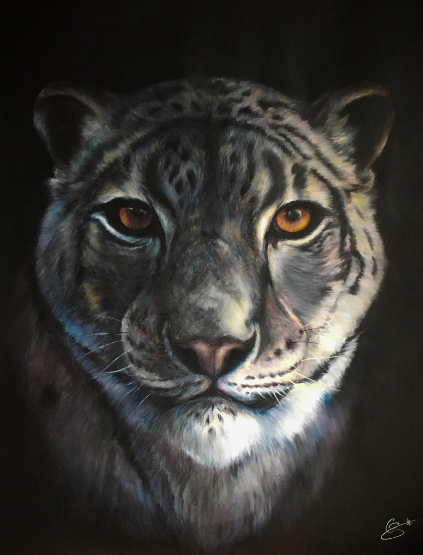 Constance Schroeder - Snow Leopard