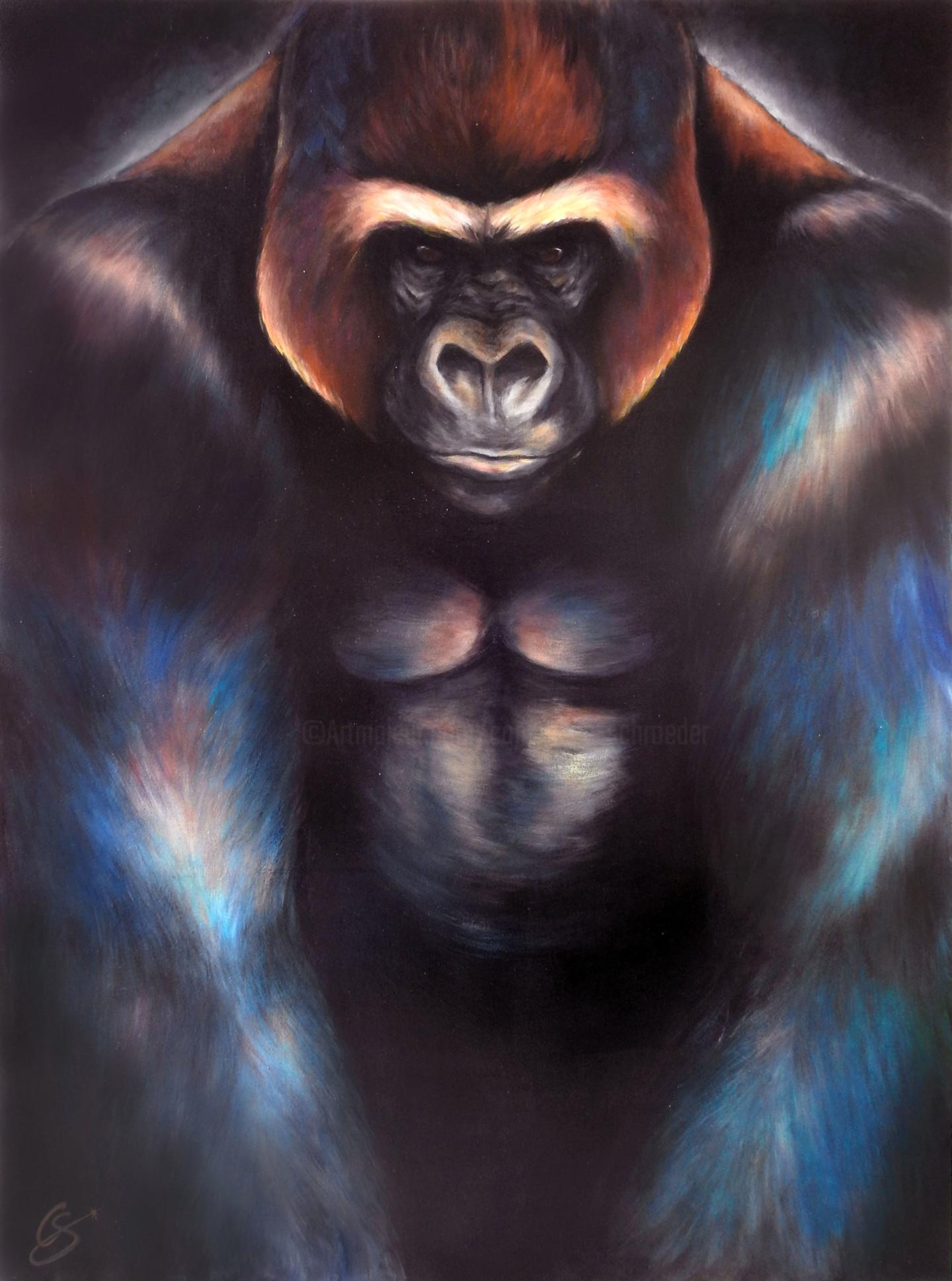 Constance Schroeder - Kong Recouvrement